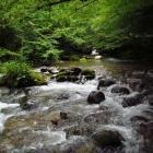 Evropski parlament poziva na donošenje strategije za životnu sredinu i energiju na nivou BiH, kao i strožiju kontrolu izgradnje hidroelektrana u ekološki osjetljivim područjima