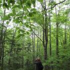 """Uspješno finaliziran projekt """"Istraživanje biodiverziteta populacija ptica gnjezdarica u visokoplaninskim ekosistemima planina Bjelašnica i Igman s osvrtom na konzervacijski status vrsta"""""""