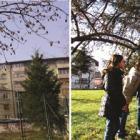 Akcija postavljanja hranilica i kućica za ptice na području grada Sarajeva