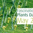 Fascination of Plants Day 2015 - Promocija diverziteta biljaka Bosne i Hercegovine